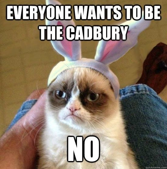 Easter Cat Meme