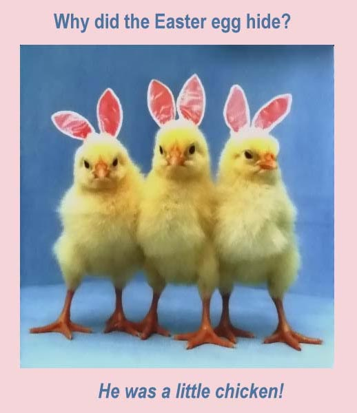Easter Memes For Pinterest